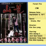 kimsooyong1977 forestfire