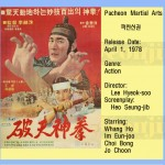leehyeoksoo1978 pacheon martial arts
