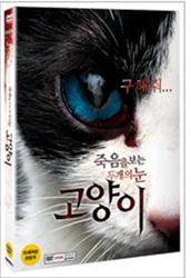 cat dvd